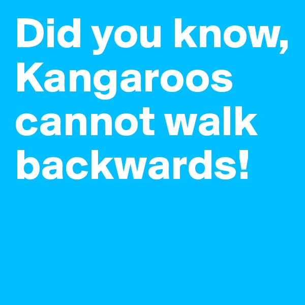 Did you know, Kangaroos cannot walk backwards!