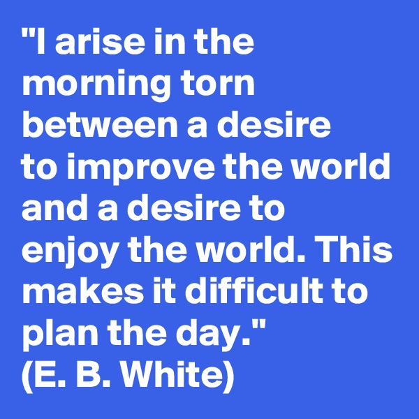 """I arise in the morning torn between a desire      to improve the world and a desire to enjoy the world. This makes it difficult to plan the day."" (E. B. White)"