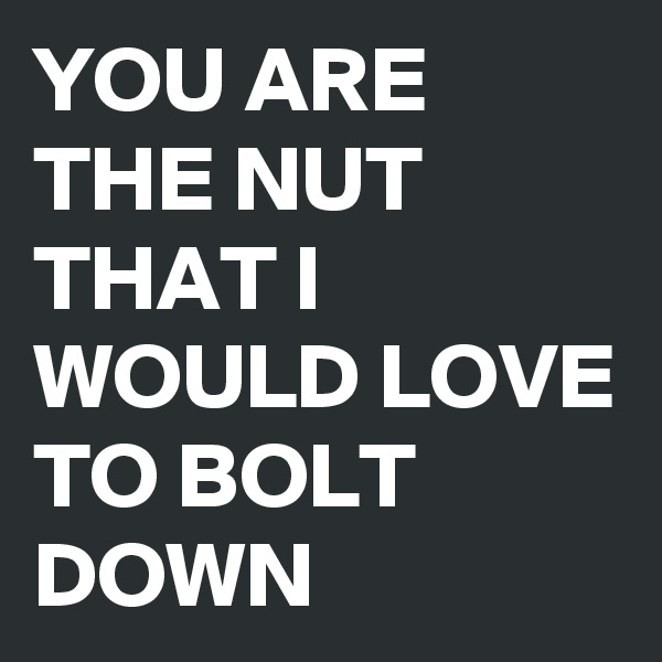 YOU ARE THE NUT THAT I WOULD LOVE TO BOLT DOWN