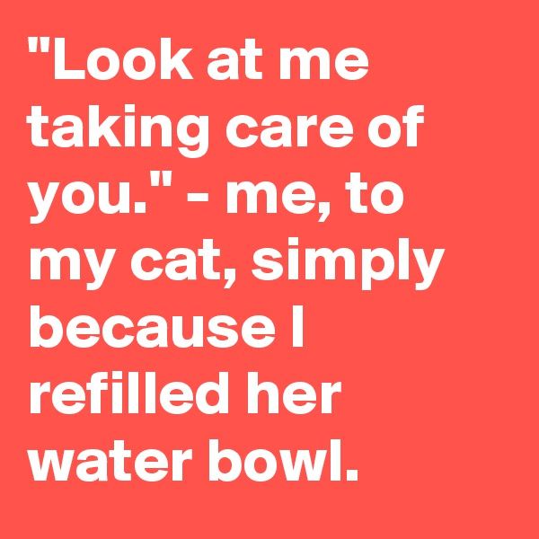 """Look at me taking care of you."" - me, to my cat, simply because I refilled her water bowl."