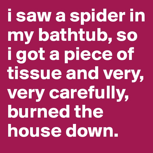 i saw a spider in my bathtub, so i got a piece of tissue and very, very carefully, burned the house down.