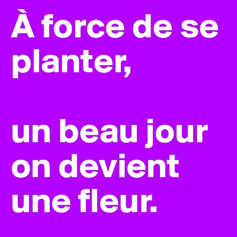 À force de se planter,   un beau jour on devient une fleur.