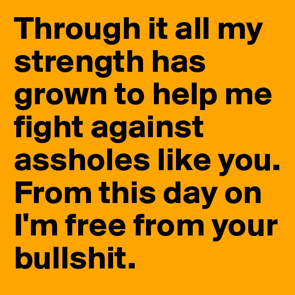 Through it all my strength has grown to help me fight against assholes like you. From this day on I'm free from your bullshit.