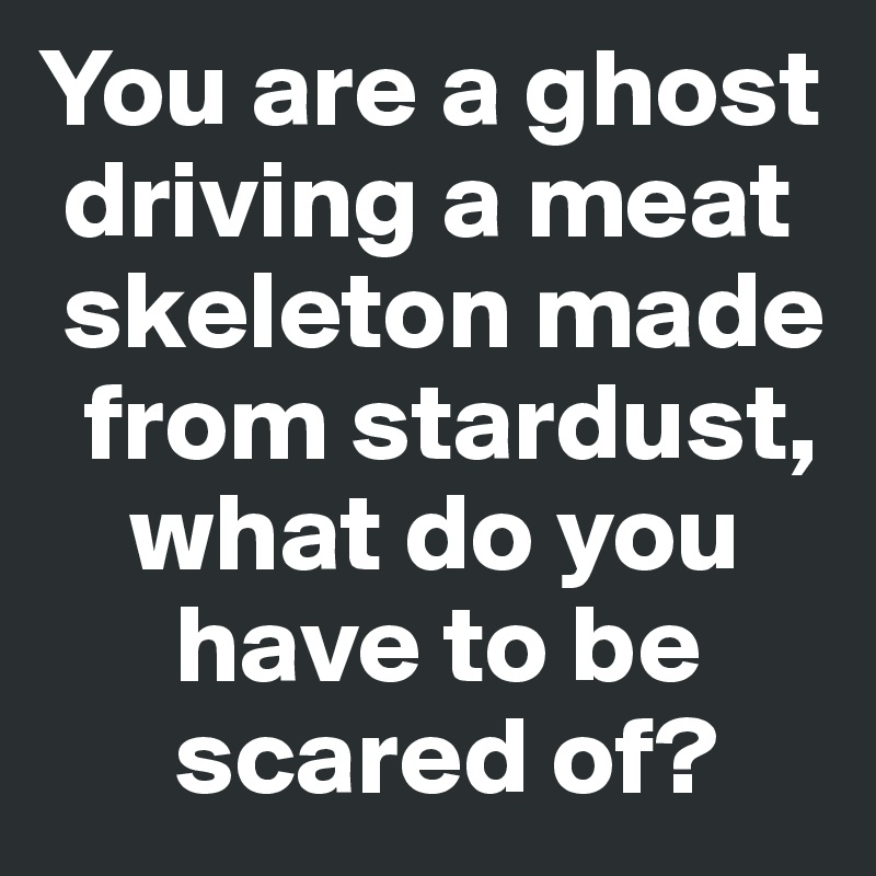 You are a ghost   driving a meat   skeleton made    from stardust,      what do you        have to be        scared of?