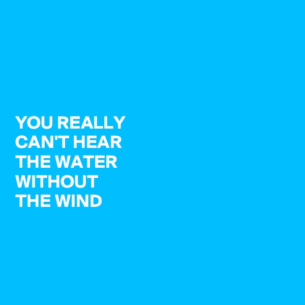 YOU REALLY CAN'T HEAR THE WATER WITHOUT THE WIND