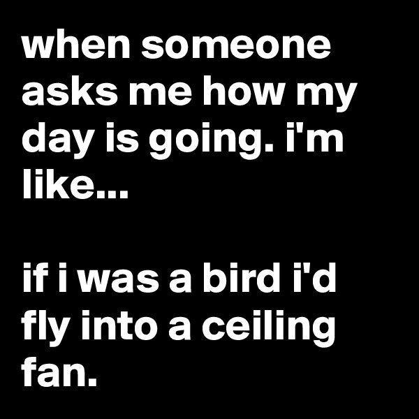 when someone asks me how my day is going. i'm like...  if i was a bird i'd fly into a ceiling fan.