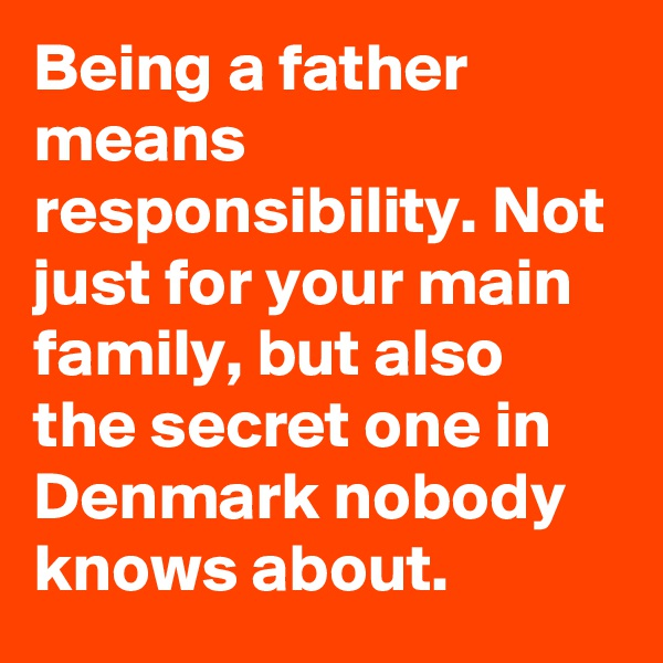 Being a father means responsibility. Not just for your main family, but also the secret one in Denmark nobody knows about.