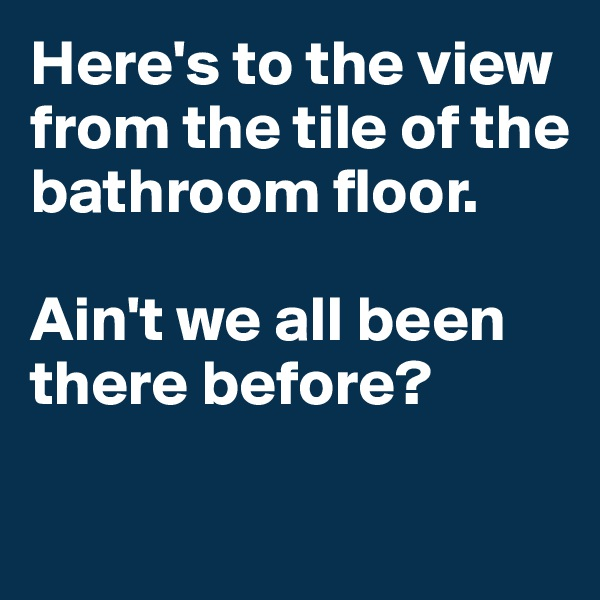 Here's to the view from the tile of the bathroom floor.   Ain't we all been there before?