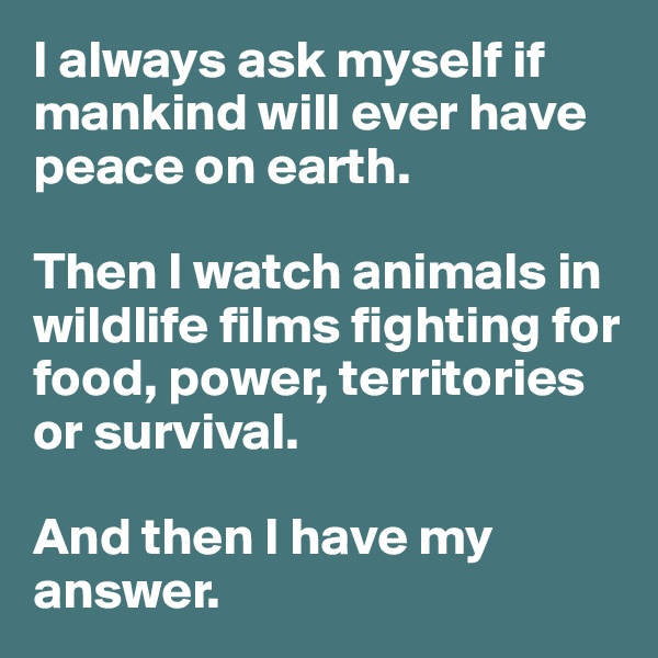 I always ask myself if mankind will ever have peace on earth.   Then I watch animals in wildlife films fighting for food, power, territories or survival.   And then I have my answer.