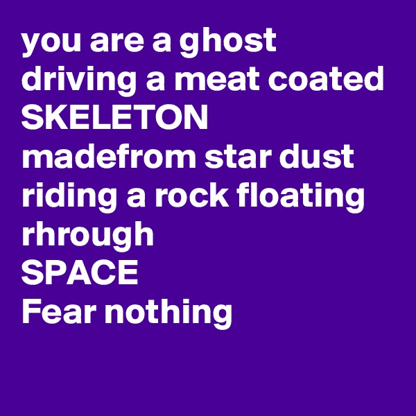 you are a ghost driving a meat coated  SKELETON madefrom star dust riding a rock floating rhrough SPACE Fear nothing