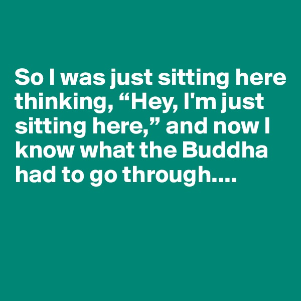"So I was just sitting here thinking, ""Hey, I'm just sitting here,"" and now I know what the Buddha had to go through...."