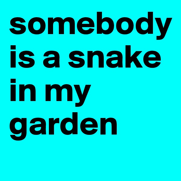 somebody is a snake in my garden
