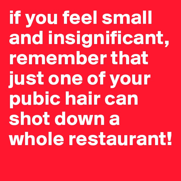 if you feel small and insignificant, remember that just one of your pubic hair can shot down a whole restaurant!