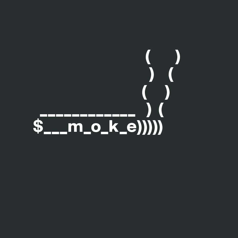 (       )                                        )    (                                      (     )         ____________   )  (       $___m_o_k_e)))))