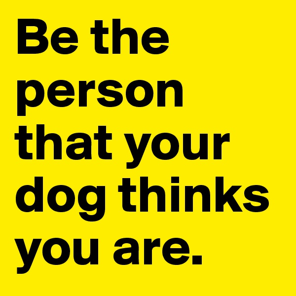 Be the person that your dog thinks you are.