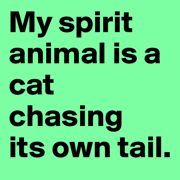 My spirit animal is a cat chasing  its own tail.