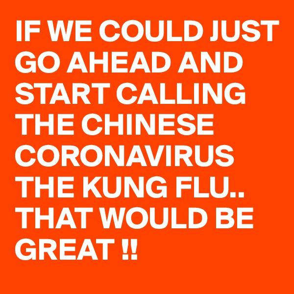 IF WE COULD JUST GO AHEAD AND START CALLING THE CHINESE CORONAVIRUS  THE KUNG FLU.. THAT WOULD BE GREAT !!
