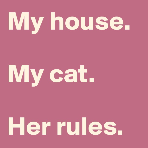 My house.  My cat.  Her rules.