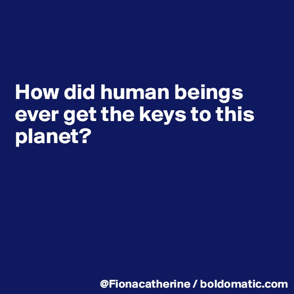 How did human beings ever get the keys to this planet?