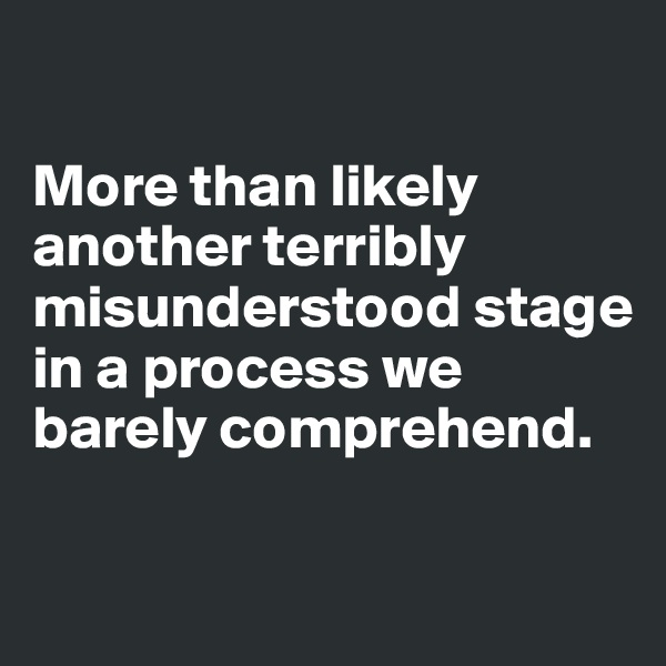 More than likely another terribly misunderstood stage in a process we barely comprehend.