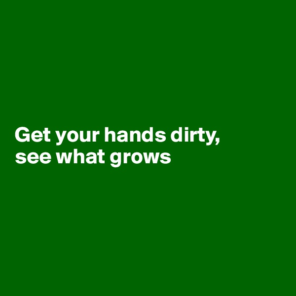 Get your hands dirty,  see what grows