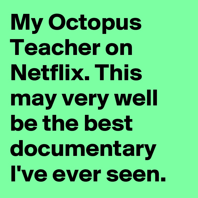 My Octopus Teacher on Netflix. This may very well be the best documentary I've ever seen.