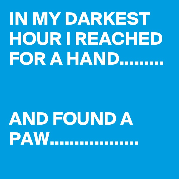 IN MY DARKEST HOUR I REACHED FOR A HAND.........   AND FOUND A PAW..................