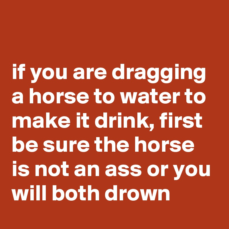 if you are dragging a horse to water to make it drink, first be sure the horse is not an ass or you will both drown