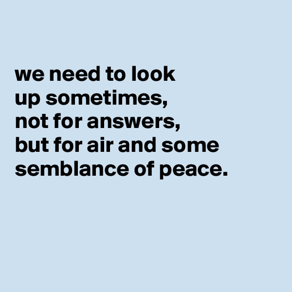 we need to look up sometimes, not for answers, but for air and some semblance of peace.