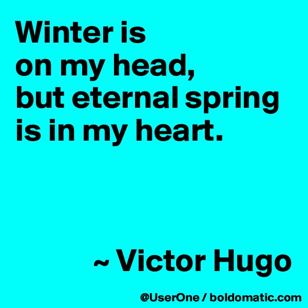 Winter is on my head, but eternal spring is in my heart.                ~ Victor Hugo