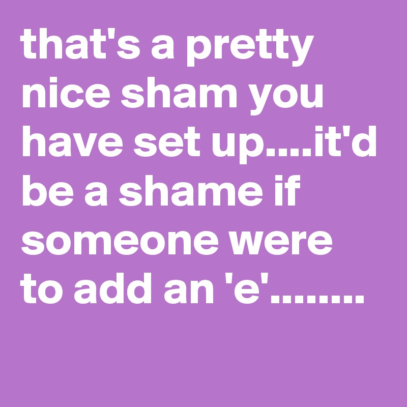 that's a pretty nice sham you have set up....it'd be a shame if someone were to add an 'e'........