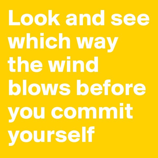 Look and see which way the wind blows before you commit yourself