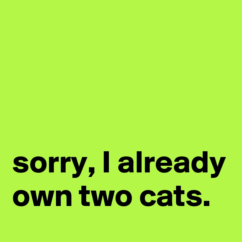 sorry, I already own two cats.
