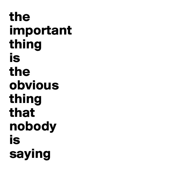 the  important  thing  is  the  obvious  thing  that  nobody  is  saying