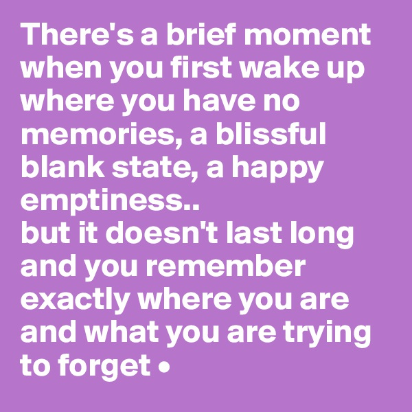 There's a brief moment when you first wake up where you have no memories, a blissful blank state, a happy emptiness.. but it doesn't last long and you remember exactly where you are and what you are trying to forget •