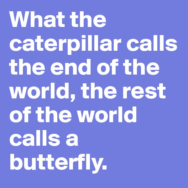What the caterpillar calls the end of the world, the rest of the world calls a butterfly.
