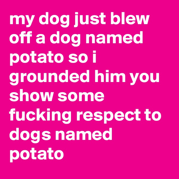 my dog just blew off a dog named potato so i grounded him you show some fucking respect to dogs named potato