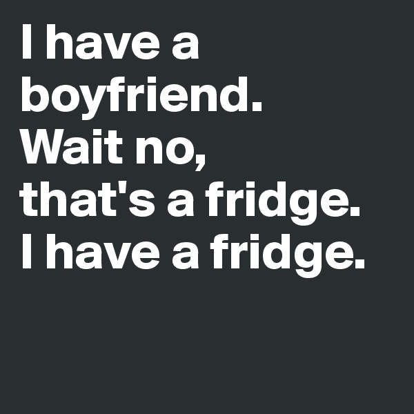 I have a boyfriend.  Wait no, that's a fridge. I have a fridge.