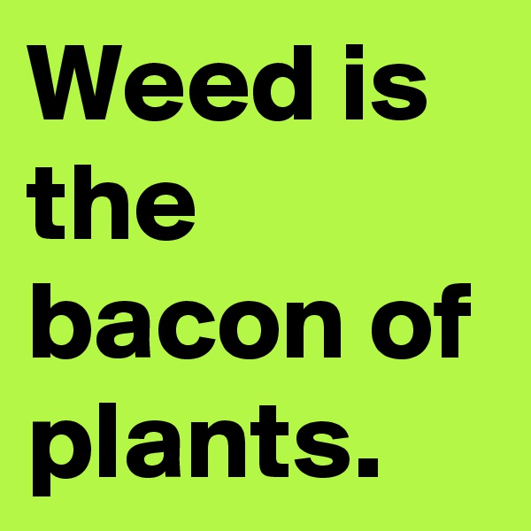 Weed is the bacon of plants.