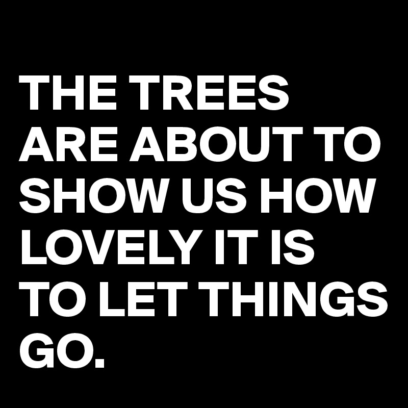 THE TREES ARE ABOUT TO SHOW US HOW LOVELY IT IS TO LET THINGS GO.