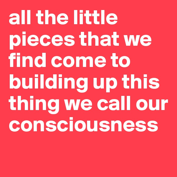 all the little pieces that we find come to building up this thing we call our consciousness