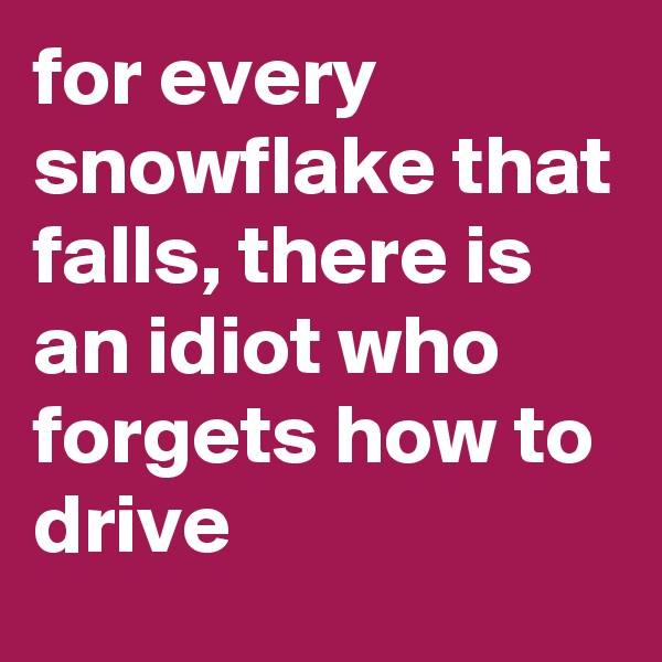 for every snowflake that falls, there is an idiot who forgets how to drive