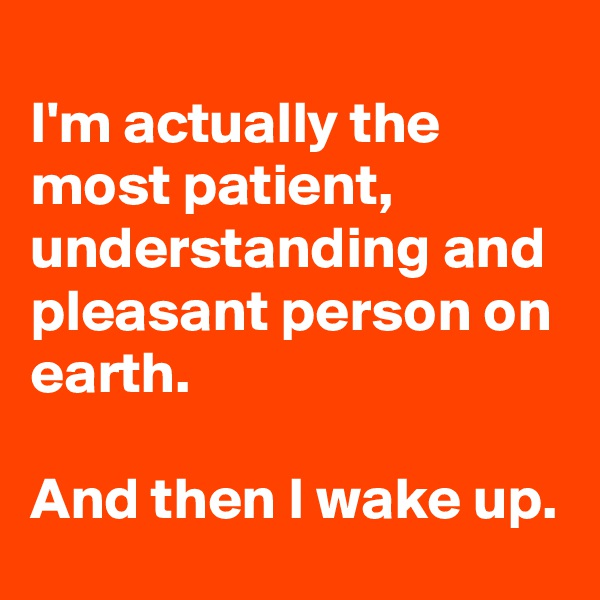 I'm actually the most patient, understanding and pleasant person on earth.   And then I wake up.
