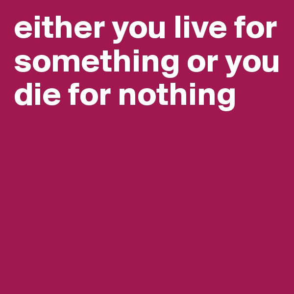 either you live for something or you die for nothing