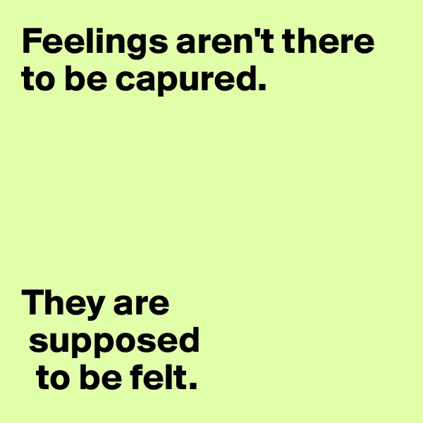 Feelings aren't there to be capured.       They are  supposed   to be felt.