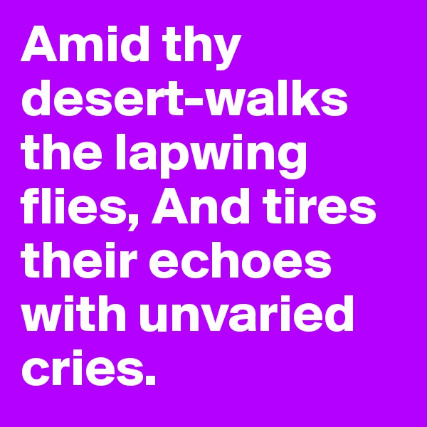 Amid thy desert-walks the lapwing flies, And tires their echoes with unvaried cries.