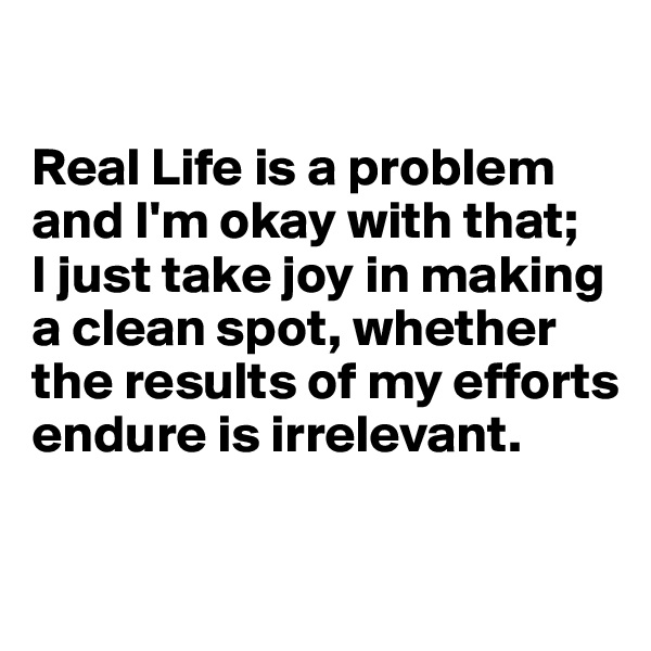 Real Life is a problem and I'm okay with that;  I just take joy in making a clean spot, whether the results of my efforts endure is irrelevant.