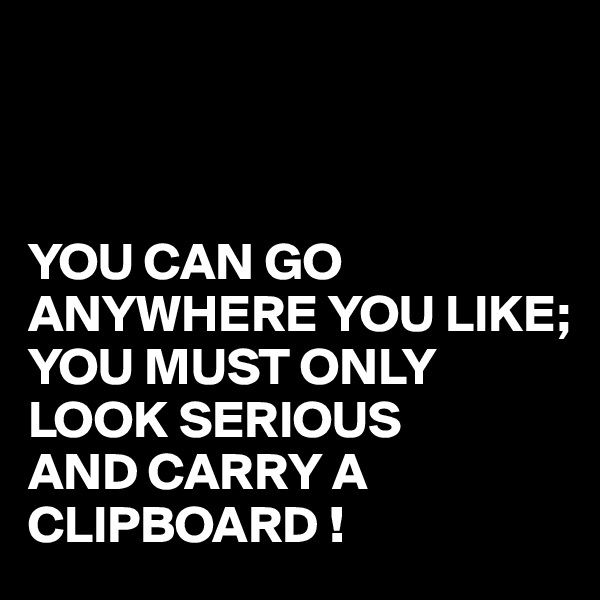 YOU CAN GO ANYWHERE YOU LIKE; YOU MUST ONLY LOOK SERIOUS  AND CARRY A  CLIPBOARD !