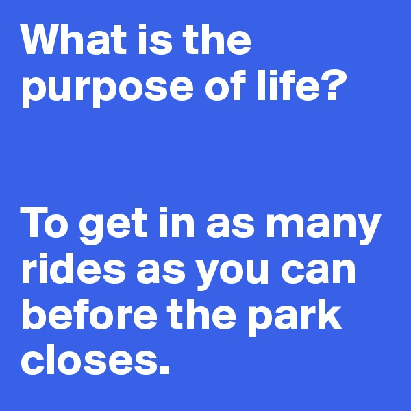 What is the purpose of life?    To get in as many rides as you can before the park closes.