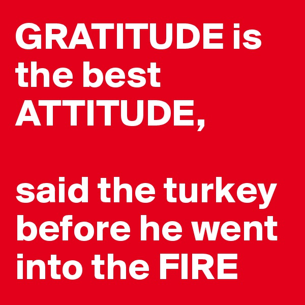 GRATITUDE is the best ATTITUDE,   said the turkey before he went into the FIRE